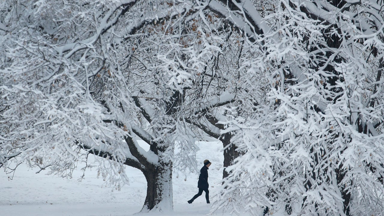 A person walks past snow-covered trees in Loose Park, Sunday, Jan. 13, 2019, in the aftermath of a winter storm that dropped more than 8 inches of snow in the Kansas City, Missouri, area. (AP Photo/Charlie Riedel)