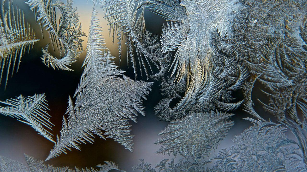 Photographer Elizabeth Root Blackmer uses macrophotography to capture the hidden details in winter frost. (Elizabeth Root Blackmer)