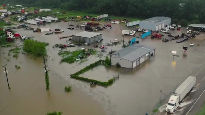 Barry's Remnants Soak Southwest Arkansas, Swamp Animal Shelter