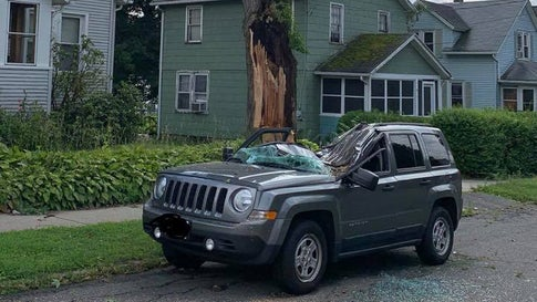From North Carolina to Maine, Storms Topple Trees, Down