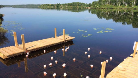 Climate Change Could Double Greenhouse Gas Emissions from Lakes, New Study Says