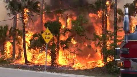 Wildfires burn in Collier County in Southwest Florida on Wednesday, May 13, 2020. (Facebook/Greater Naples Fire Rescue District)