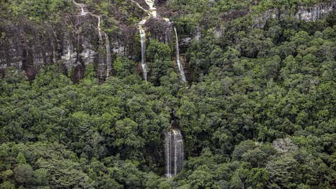 "The Chiribiquete National Park in Colombia is the largest tropical rainforest national park in the world. ""The forests that we have today are really the by-product of what happened 66 million years ago,""  said Carlos Jaramillo, who studies ancient pollen at the Smithsonian Tropical Research Institute in Panama City. (GUILLERMO LEGARIA/AFP via Getty Images)"