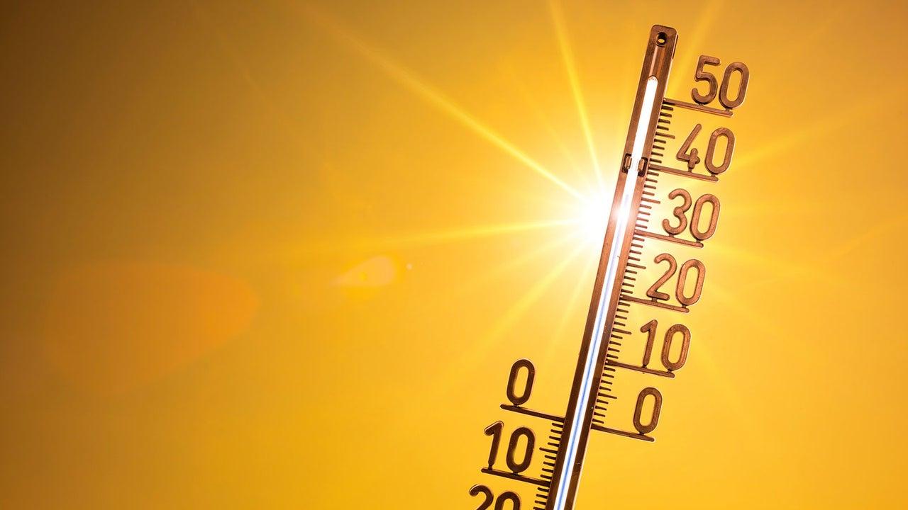 Der vergangene Monat ist nach Messungen der US-Klimabehörde NOAA global der zweitwärmste Oktober seit Beginn der Aufzeichnungen im Jahr 1880 gewesen.
