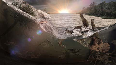 An asteroid impact near what's now the Yucatan Peninsula caused giant waves in an inland sea that sloshed into the mouth of a river, leaving a fossilized record of the day the dinosaurs became extinct. (Illustration courtesy of Robert DePalma via UC Berkley)