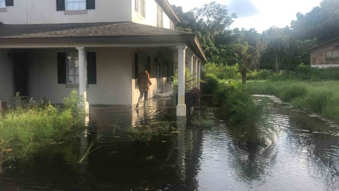 Orlando Fl News Articles Stories Amp Trends For Today