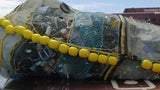 20,000 Pounds Collected from Great Pacific Garbage Patch
