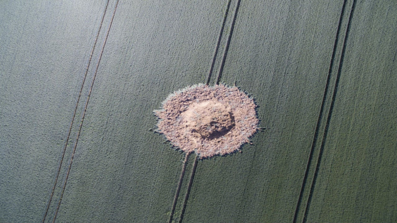 An unexploded bomb detonated seemingly by itself on a farm in Germany