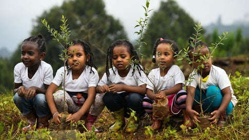 Ethiopian girls take part in a national tree-planting drive in Addis Ababa, on July 28, 2019. Ethiopia plans to plant a mind-boggling four billion trees by October 2019, as part of a global movement to restore forests to help fight climate change and protect resources. (Michael Tewelde/AFP/Getty Images)
