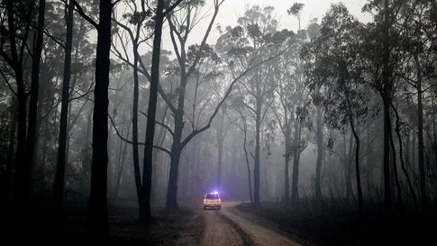 A Country Fire Authority crew inspects burned out forest on Tuesday, January 7, 2020, surrounding Cann River in Victoria, Australia. Milder weather conditions have provided some relief for firefighters in Victoria as bushfires continue to burn across the East Gippsland area. (Darrian Traynor/Getty Images)