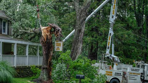 A worker removes a tree that fell on a house in Milford after a strong storm caused by Tropical Storm Elsa struck the area. Damage from Tropical Storm Elsa hit the mid-Atlantic states Thursday night and Friday morning. (Preston Ehrler/SOPA Images/LightRocket via Getty Images)