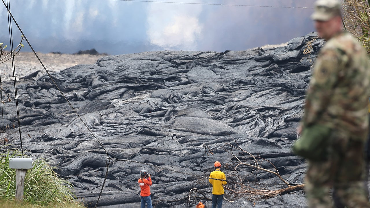 Kilauea's Lava Fields Become Home to an Unlikely Species