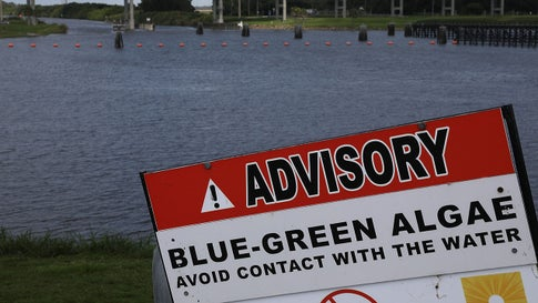 A sign warns of blue-green algae in the water near the Port Mayaca Lock and Dam on Lake Okeechobee on July 13, 2018, in Port Mayaca, Florida. (Joe Raedle/Getty Images)