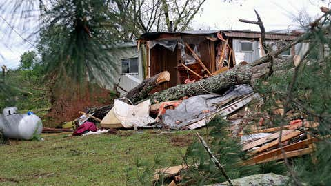 A pine tree lies across what remains of a mobile home on Center Hill Road outside of Hamilton, Mississippi, on Sunday, April 14, 2019, after a deadly storm moved through the area. (AP Photo/Jim Lytle)