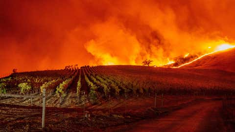 Flames approach rolling hills of grapevines during the Kincade fire near Geyserville, California, on Thursday, October 24, 2019. The fire broke out in spite of rolling blackouts by utility companies in both Northern and Southern California. (Josh Edelson/AFP via Getty Images)
