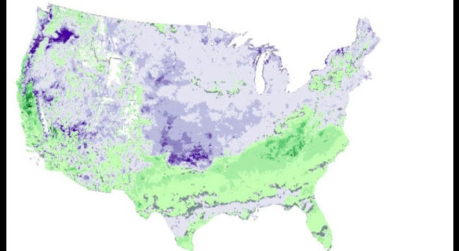 Spring's Record-Late Arrival in Parts of the U S  Has a