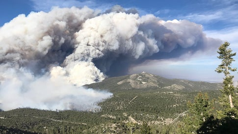 The Mahogany Fire has burned almost 8 square miles as of Monday, June 29, 2020. It is on Mt. Charleston, about 25 miles northwest of Las Vegas, Nevada. (Twitter/@HumboldtToiyabe National Forest)