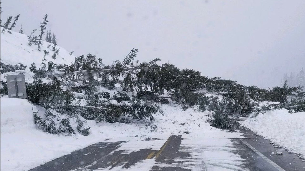 Avalanches have covered U.S. 550 in the Red Mountain Pass near Ouray, Colorado, with massive amounts of snow and debris. The highway will be closed indefinitely. (Colorado Department of Transportation)