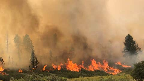 The Pine Gulch Fire, 18 miles north of Grand Junction, Colorado, began on July 31 with a lightning strike. As of Sunday, August 9, 2020, it had consumed more than 37 square miles. (Facebook/@PineGulchFireCO/Rocky Mountain Incident Management Team)