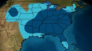 Cold Plunge Ahead: Here's What We Know