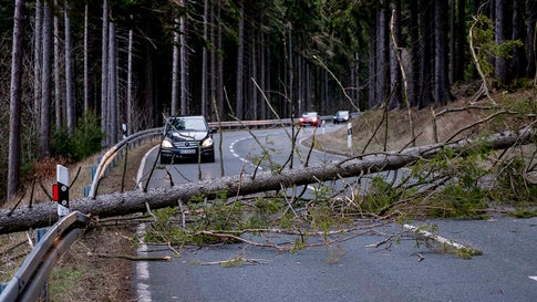 A tree blocks a road in the Taunus region in a strong storm near Frankfurt, Germany, Sunday, Feb. 9, 2020. (AP Photo/Michael Probst)