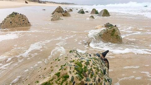 Devastating erosion has uncovered thousands of World War II tank traps on Stockton Beach in Newcastle, New South Wales, in Australia. (Facebook/Simon Jones/Save Stockton Beach)
