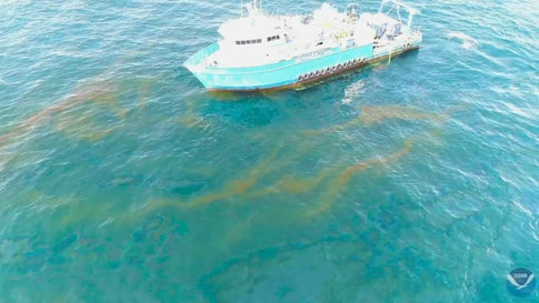 14-Year-Long Gulf of Mexico Oil Leak is Bigger Than Energy Company Claims, Federal Study Finds