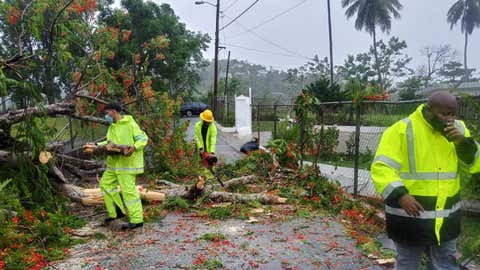 Workers remove a tree felled by Tropical Storm Isaias in Trujillo Alto, Puerto Rico, on Thursday, July 30, 2020. (Facebook/Municipality of Trujillo Alto)