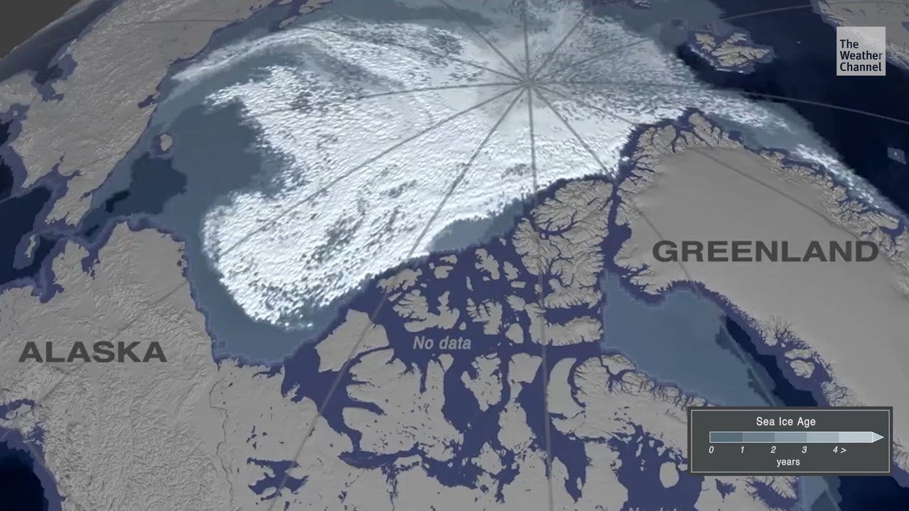 A new video released by the AGU shows how dramatic the loss of Arctic sea ice has been since 1984.