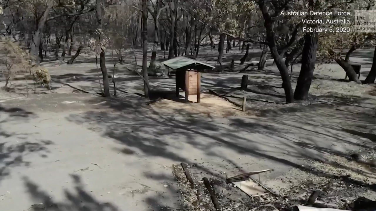 Australia's Wildfires Burned 21% of Forests