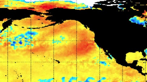 'The Blob' Is Back in the Pacific