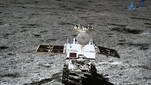 China's Lunar Probe Sees First Cotton-seed Sprout