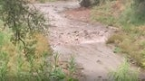 Flash Flood Rushes Down Creek in Southern Arizona