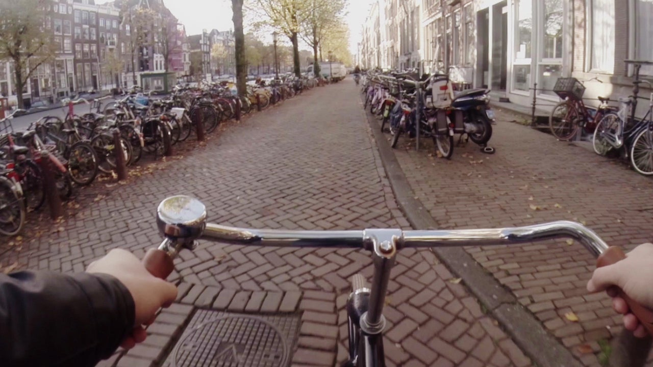 The Amount Dutch People Cycle Is Like Planting 54 Million Trees a Year