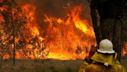Australien, Taree: Ein Feuerwehrmann beobachtet ein Buschfeuer. Dutzende Buschfeuer bedrohen große Gebiete im Osten Australiens.