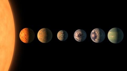 Studie legt nahe: Es gibt Exoplaneten mit einer größeren Artenvielfalt als bei uns