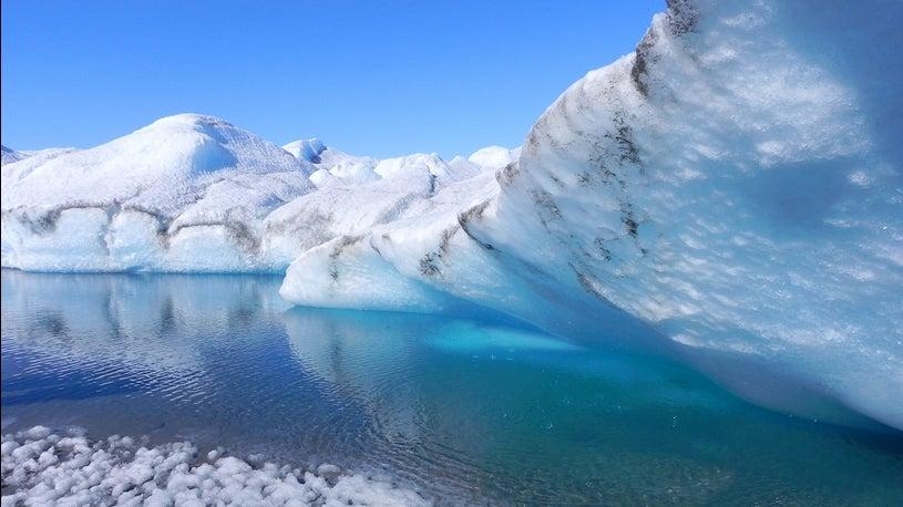 Tödlicher Virus: Eisschmelze macht Weg frei für gefährliche Seuche