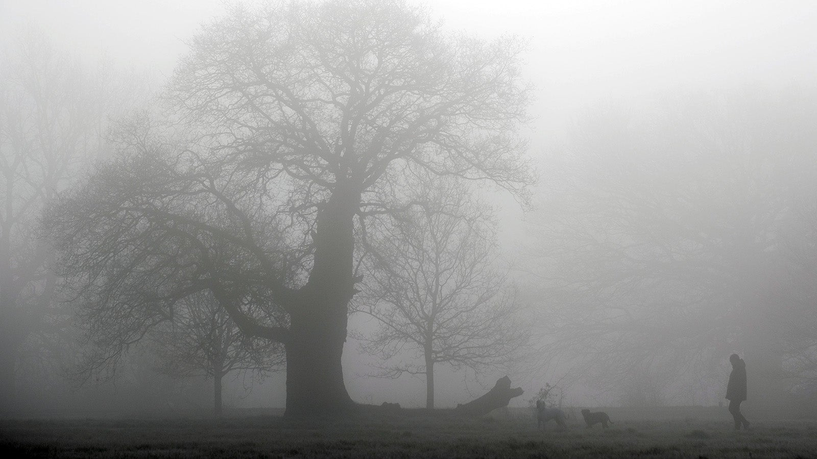 Colder week set to bed in as storms have passed over UK