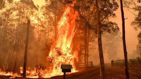 """Australien: Feuer schließen sich zu """"Mega-Brand"""" zusammen – Neue Hitzewelle kommt"""