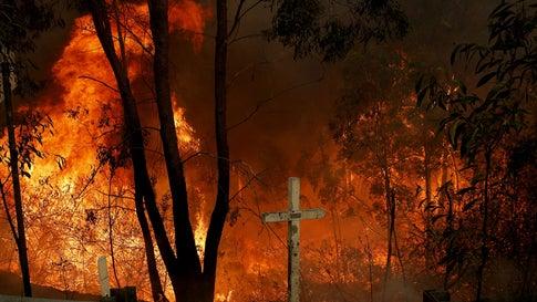 Australier soll absichtlich Feuer gelegt haben – um Cannabisplantage zu schützen