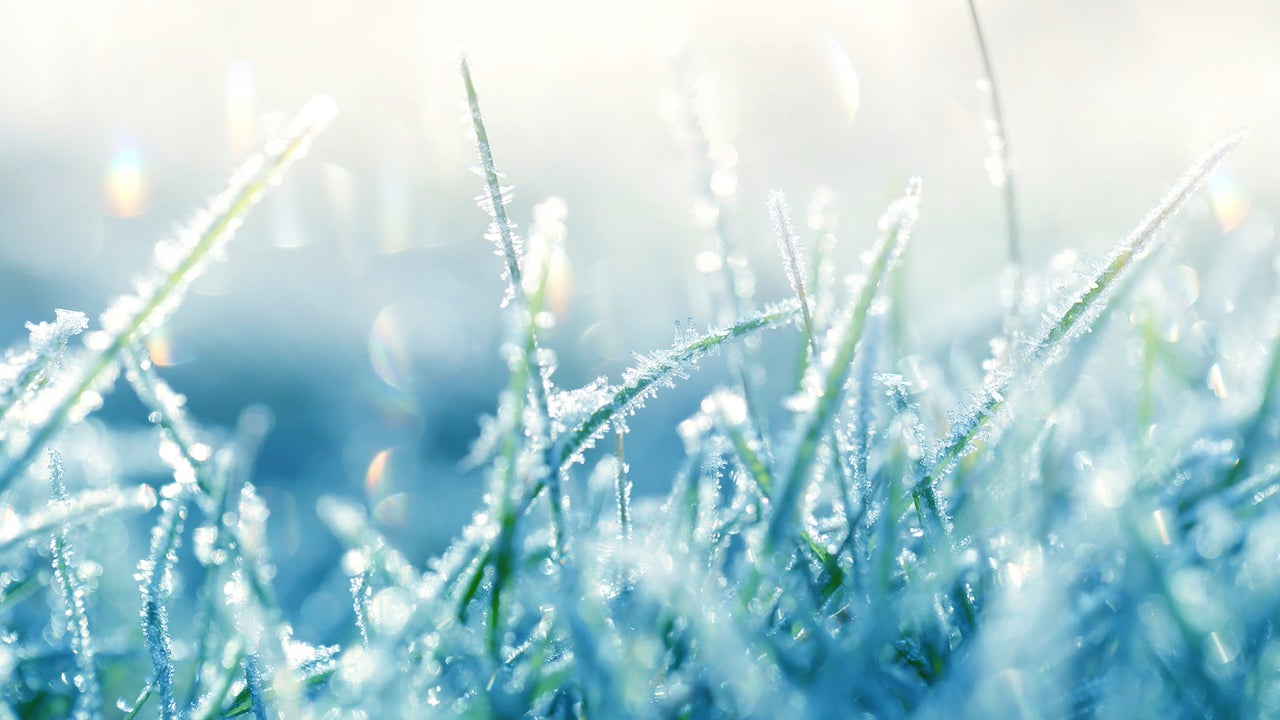 Abendwetter: Schauer und örtlich Frost