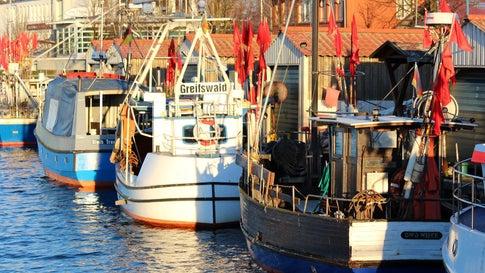 Viel zu warm! Greifswald schreibt Wettergeschichte