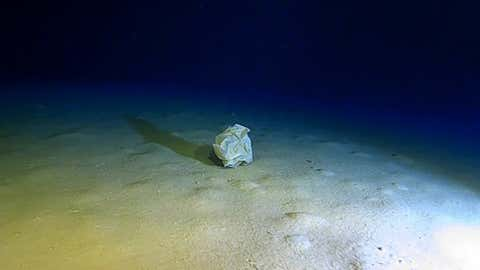 A plastic bag on the bottom of Calypso Deep, at 5109 m, the deepest place in the Mediterranean Sea.  CREDIT Caladan Oceanic