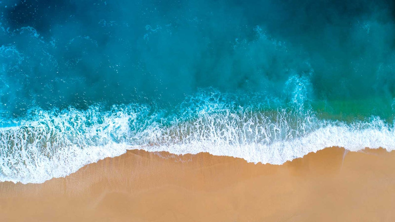 Übermäßiger Fischfang, verschmutztes Grundwasser, Plastikmüll und Emissionen machen den Meeren stark zu schaffen. Doch schon jeder Einzelne kann etwas bewirken.