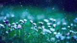 Pollenflug-Wochenvorhersage: Starke Belastung zur Wochenmitte