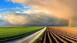 Wetter am Mittwoch: Im Süden Sonne, im Norden Regen