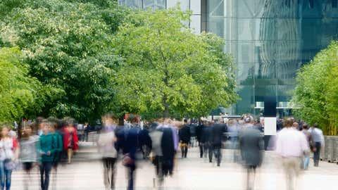 Schadstoffe, Klimawandel, Streusalz, Verkehr und mehr: Stadtbäume leiden unter mehr Stress als Bäume in der freien Natur. Das macht sie angreifbarer für Schadorganismen. Foto: GettyImages