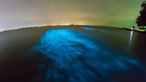 leuchtender Strand (im Dunkeln)