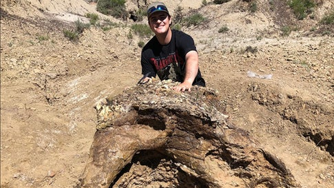 College Student Makes Discovery of a Lifetime in North Dakota: the Skull of Triceratops Named Alice