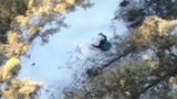 Police Use a Drone to Locate Missing Hiker in Alaska